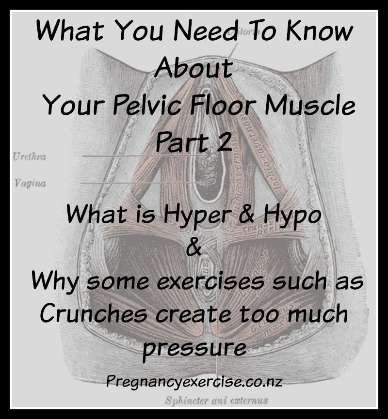 pelvic floor muscle health part 2