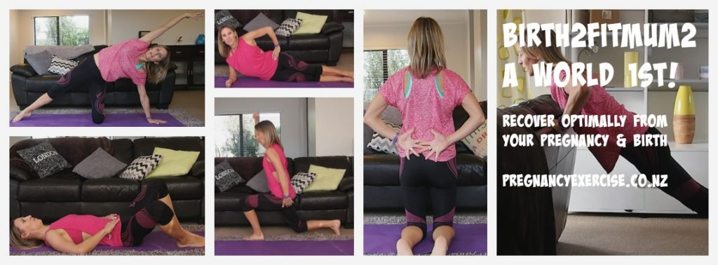 Postnatal diastasis safe 12 week program
