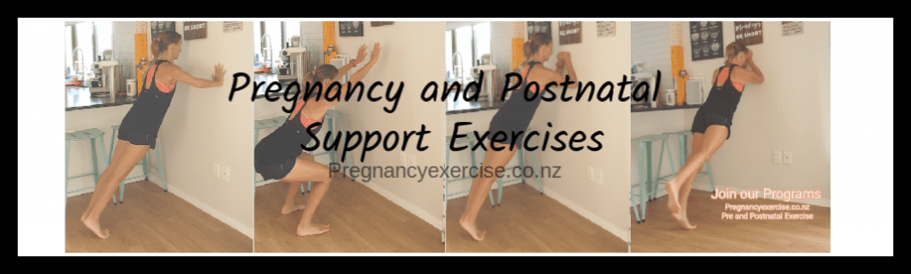 pregnancy and Postnatal Support Exercises
