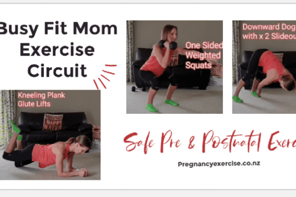 Busy Fit Mom Exercise Circuit